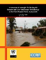 Assessment of strategies for linking the damage and loss assessment methodology to the post-disaster needs assessment